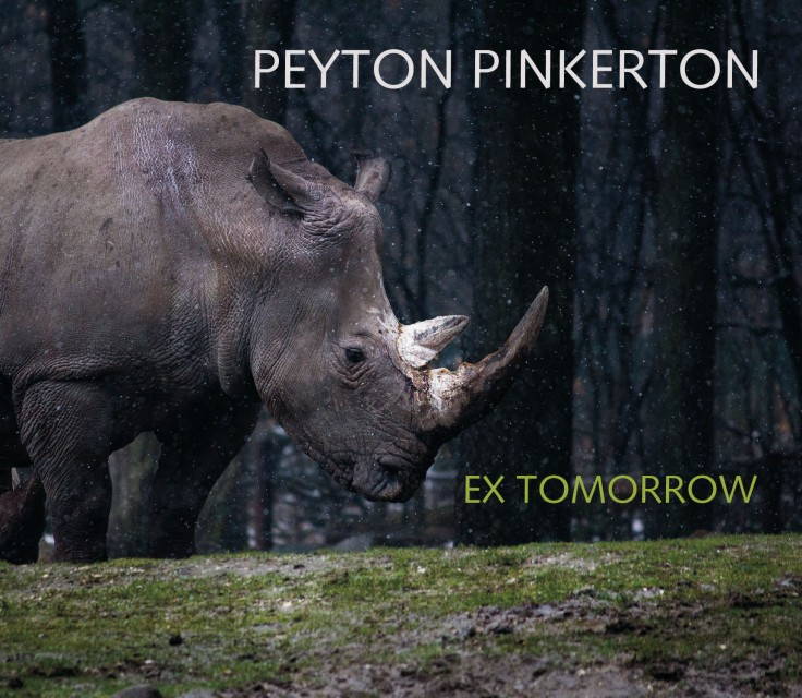 Peyton Pinkerton: Ex Tomorrow CD cover rhino in front of silhouetted trees